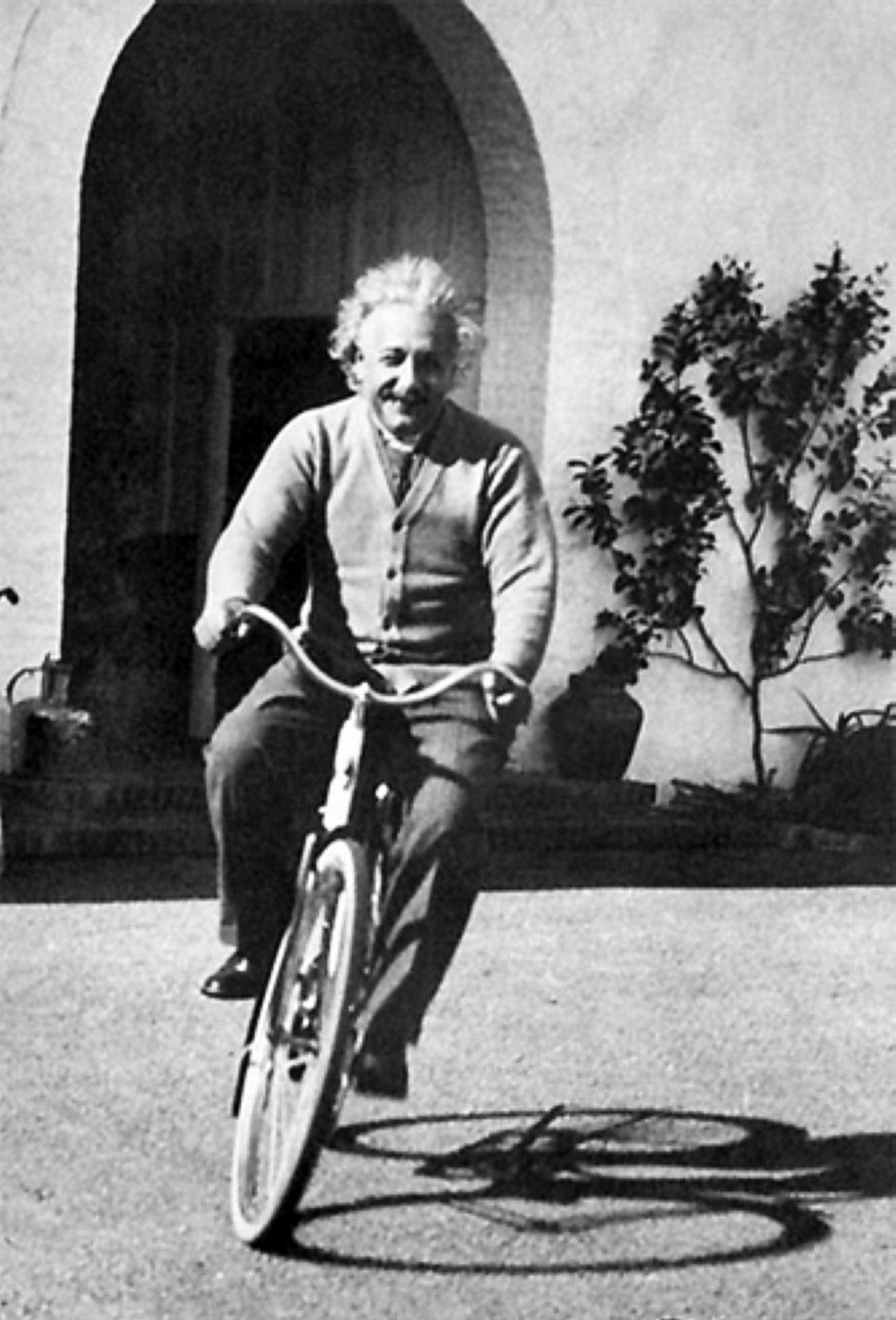 einstein-bicicletta-cult-foto-photo-cultstories